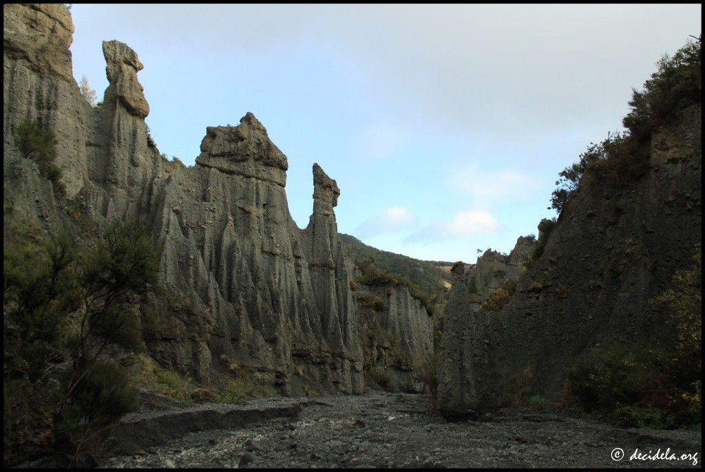 Pinnacles - Cap Palliser
