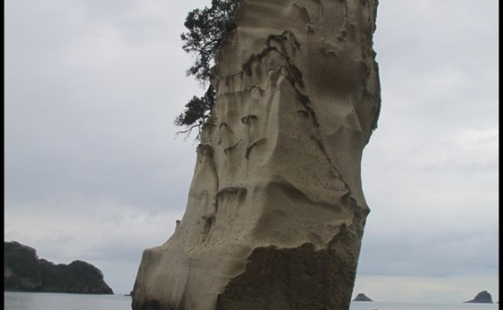 Cathedral Cove (4)